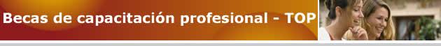 Becas de capacitación profesional